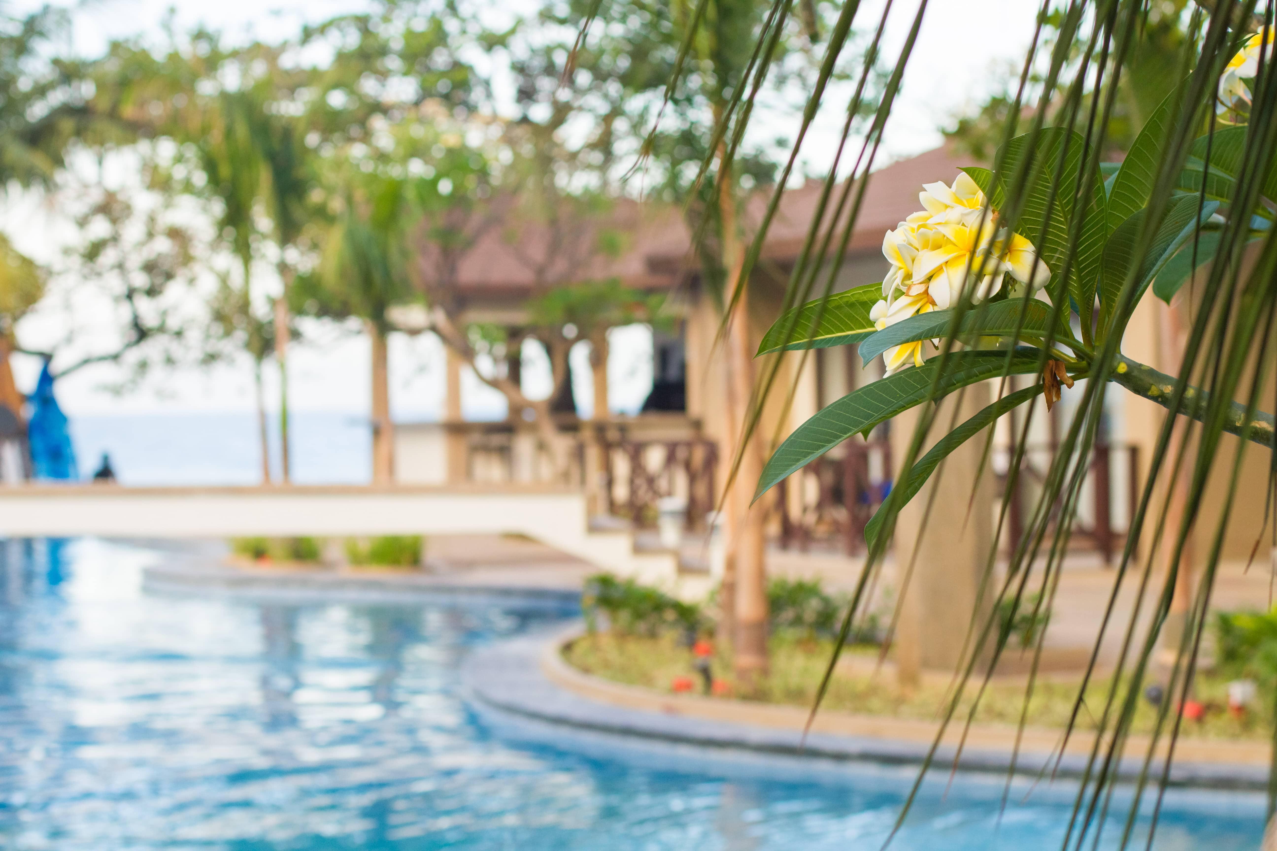 Aureo Hotels And Resorts La Union Beach Resort La Union Hotels