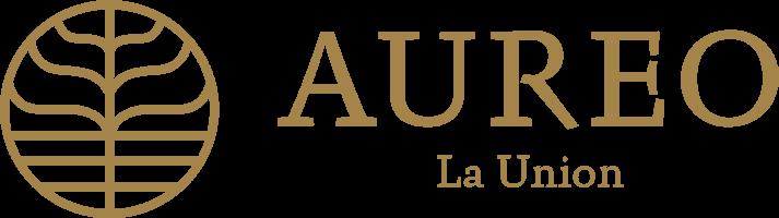 Aureo Hotel & Resort | San Fernando La Union